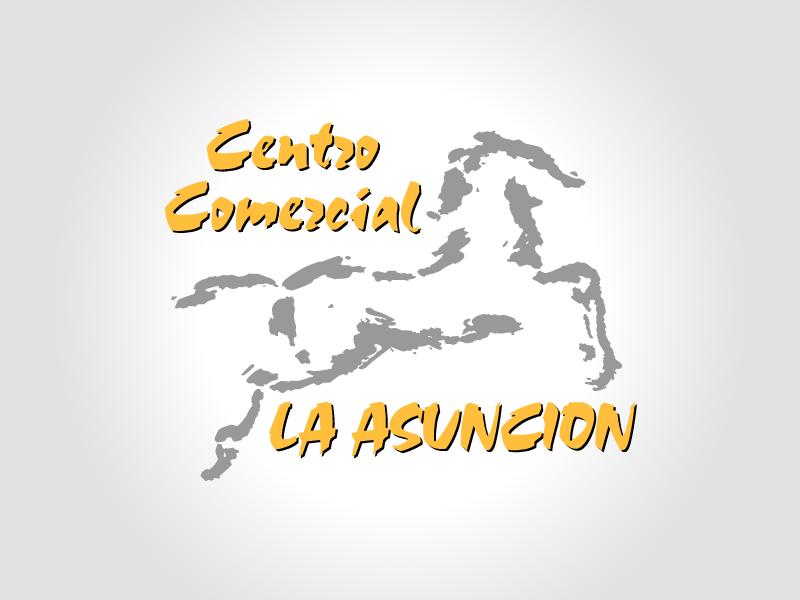Centro Comercial La Asunción